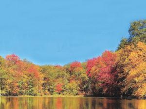 fall-foliage-cruise-bethel-tours-near-me